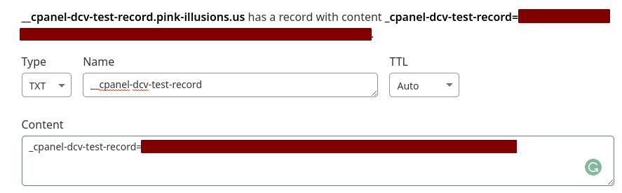 Text Records in DNS Zone Editor